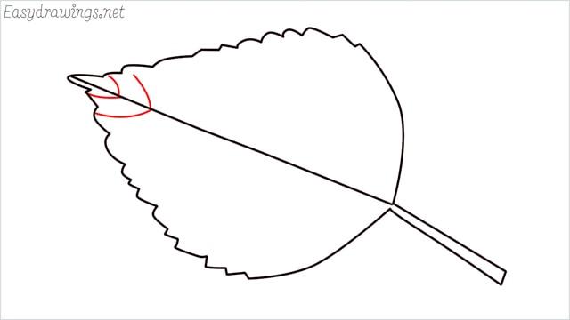 how to draw a leaf step (6)