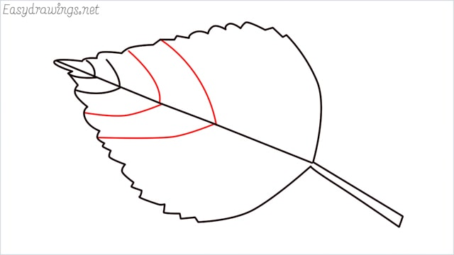 how to draw a leaf step (7)