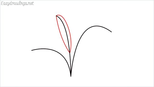 how to draw a little bush step (4)