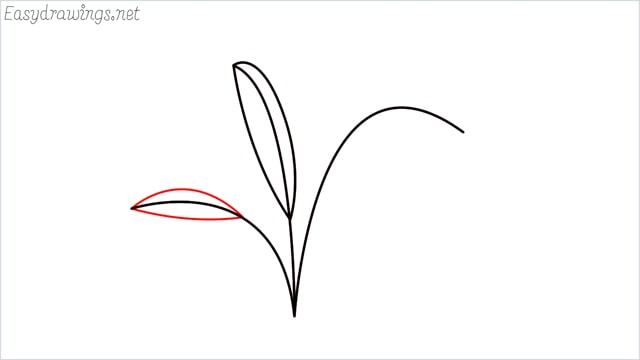 how to draw a little bush step (5)