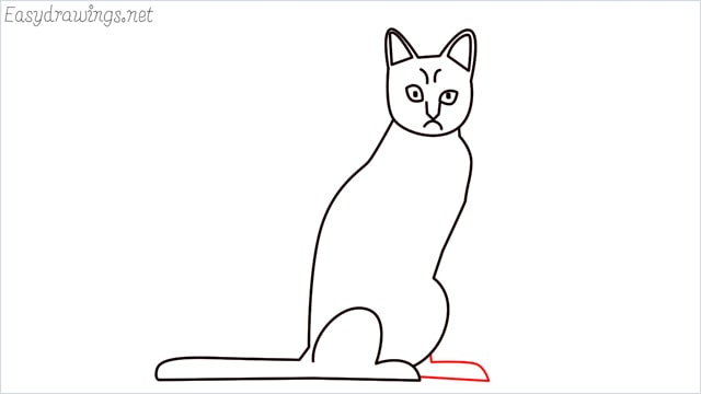 how to draw a sitting cat (10)