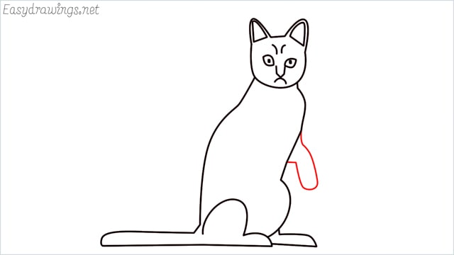 how to draw a sitting cat (11)