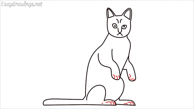 how to draw a sitting cat (13)