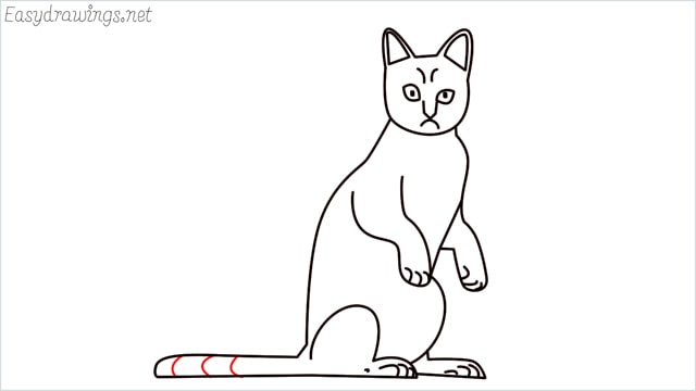 how to draw a sitting cat (14)