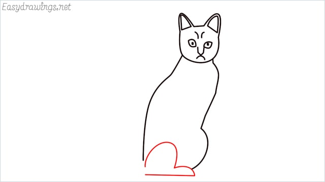 how to draw a sitting cat (8)