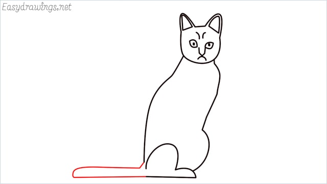 how to draw a sitting cat (9)