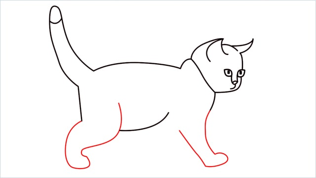 how to draw a walking baby cat (9)
