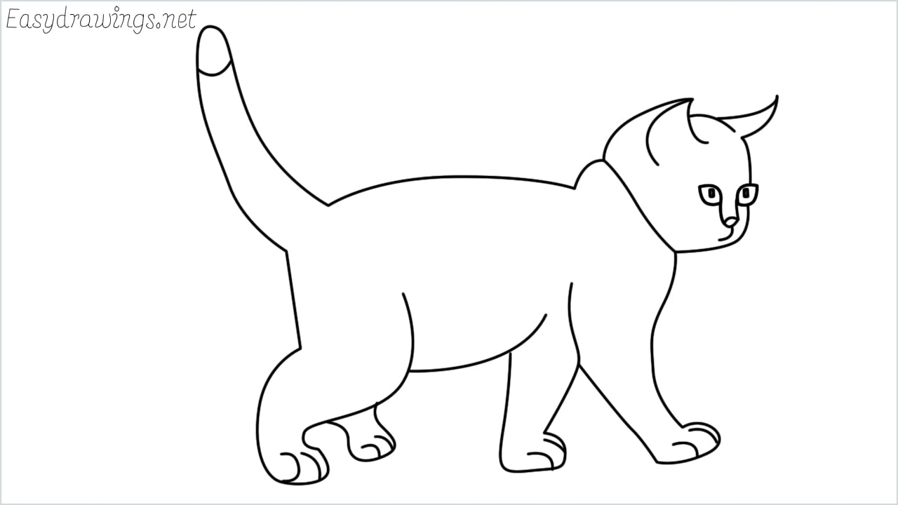 how to draw a walking baby cat step by step for beginners