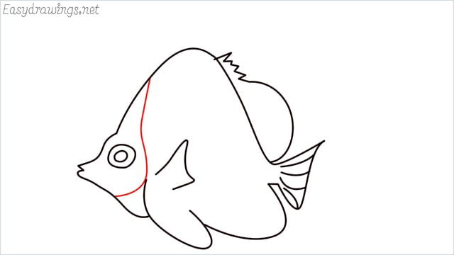 how to draw an angelfish step (10)
