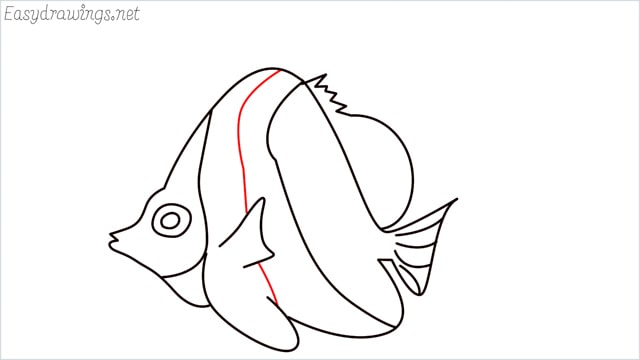 how to draw an angelfish step (12)