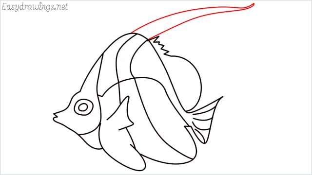 how to draw an angelfish step (14)
