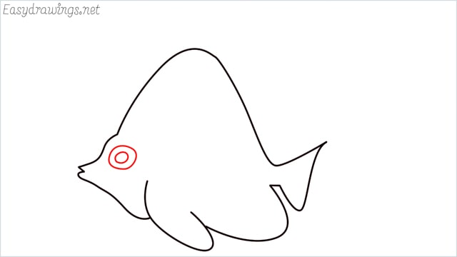 how to draw an angelfish step (6)