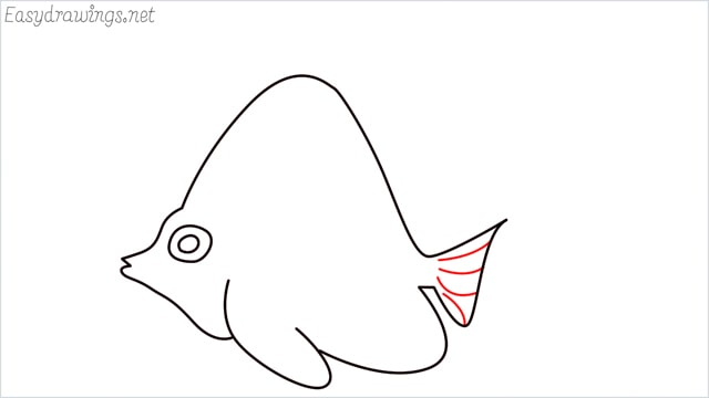 how to draw an angelfish step (7)