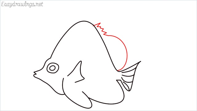 how to draw an angelfish step (9)