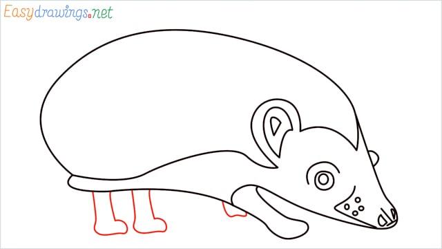how to draw a hedgehog step (10)