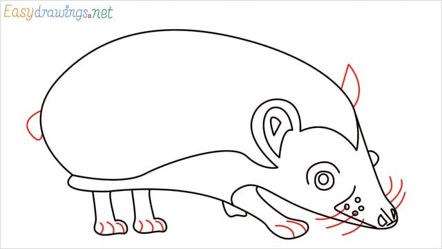 how to draw a hedgehog step (11)