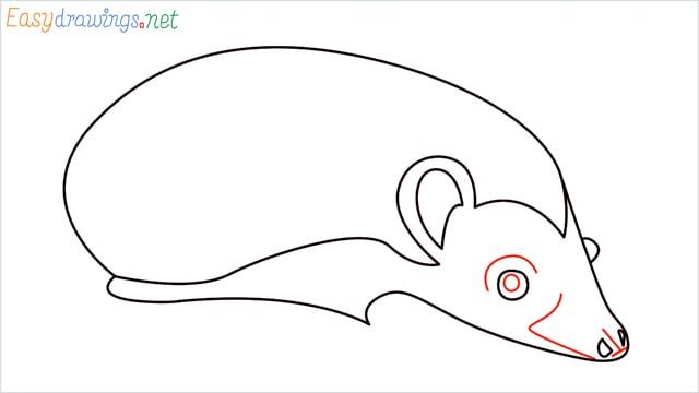 how to draw a hedgehog step (7)