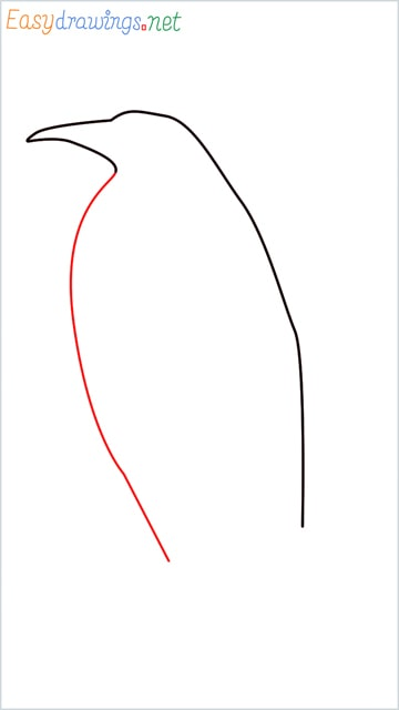 how to draw a penguin step (3)