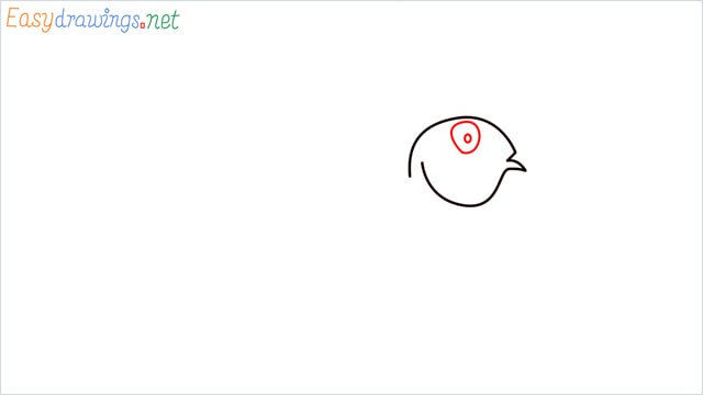 How to draw a Discus Fish step (3)