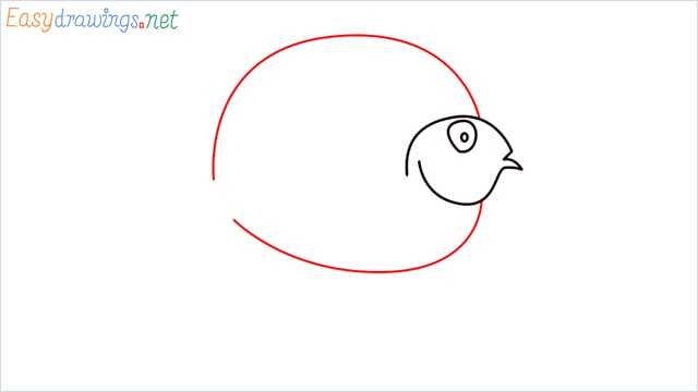 How to draw a Discus Fish step (4)