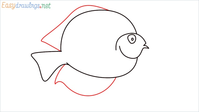 How to draw a Discus Fish step (6)