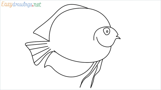 How to draw a Discus Fish step by step