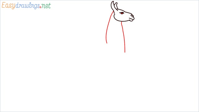 How to draw a Llama step (5)