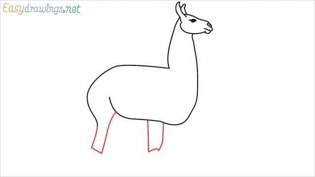 How to draw a Llama step (7)