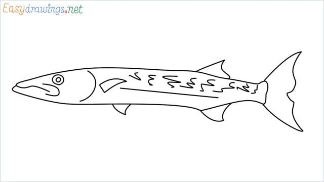how to draw a baracuda fish step by step