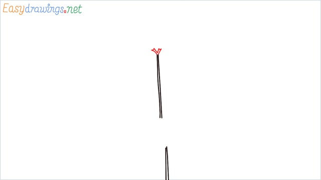 how to draw a chilli tree step (2)
