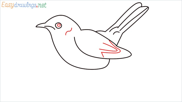 how to draw a lark step (7)