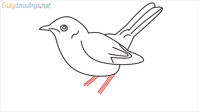 how to draw a lark step (8)