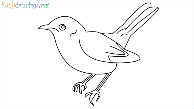 how to draw a lark step by step