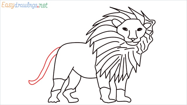 how to draw a lion step (14)