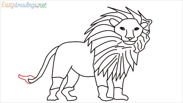 how to draw a lion step (15)