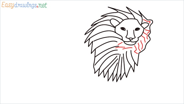 how to draw a lion step (8)