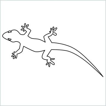 lizard drawing