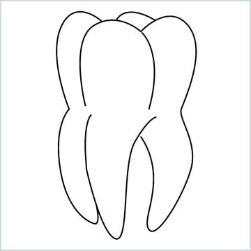 teeth drawing