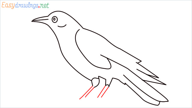 How to draw a Raven step (10)