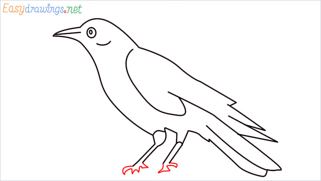 How to draw a Raven step (11)