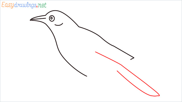 How to draw a Raven step (5)