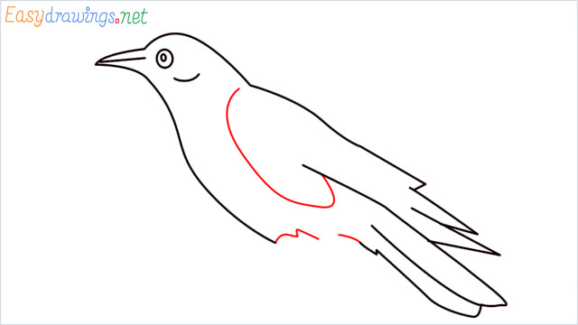 How to draw a Raven step (8)