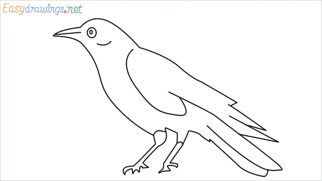How to draw a Raven step by step