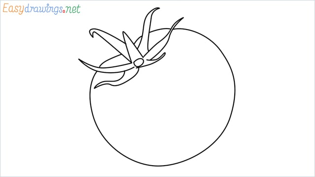 How to draw a Tomato step by step