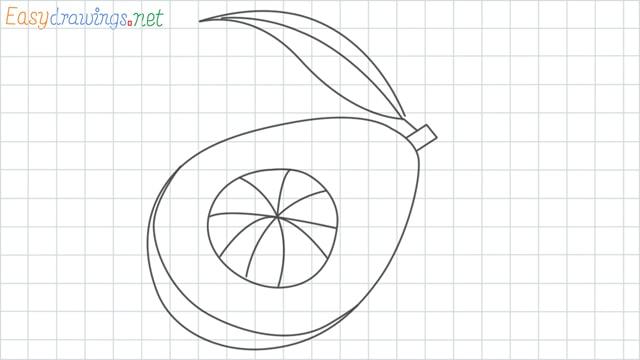 Avocado grid line drawing