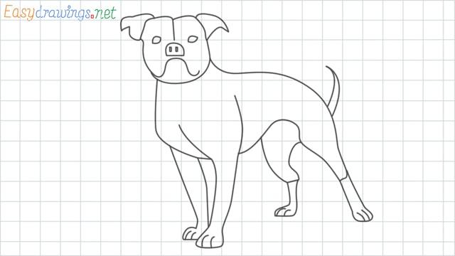 Bulldog grid line drawing