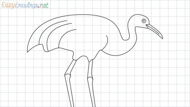 Crane grid line drawing