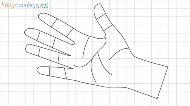 Hand grid line drawing