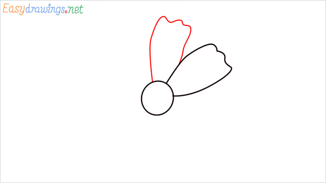 How to draw a Marigold flower step (3)