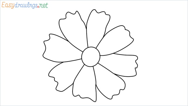 How to draw a Marigold flower step by step
